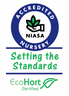 Accredited Nursery